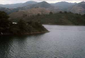 Yauco Lago 1976.jpg